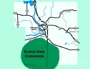 buena vista map